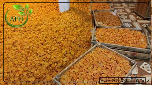 شرکت فروش زردآلو عسگر آباد صادراتی