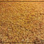 بازرگانی فروش زردآلو عسگر آباد ارومیه