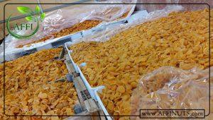 صادرات قیسی زردآلو ممتاز تبریز